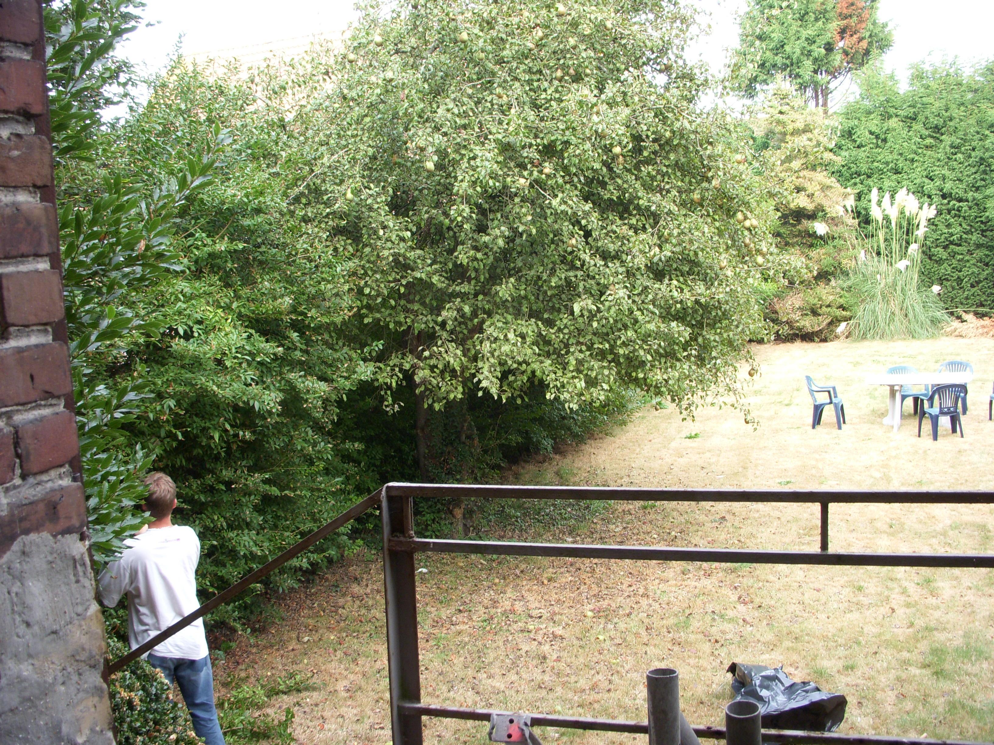 Loft ghyvelde dans une ancienne brasserie jardin for Jardinage pau